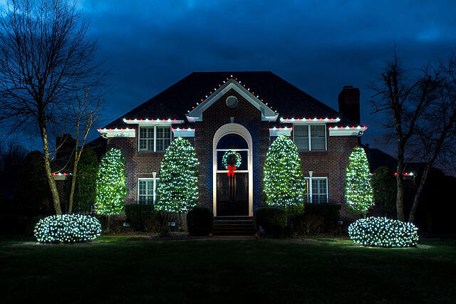 Bright white holiday lights
