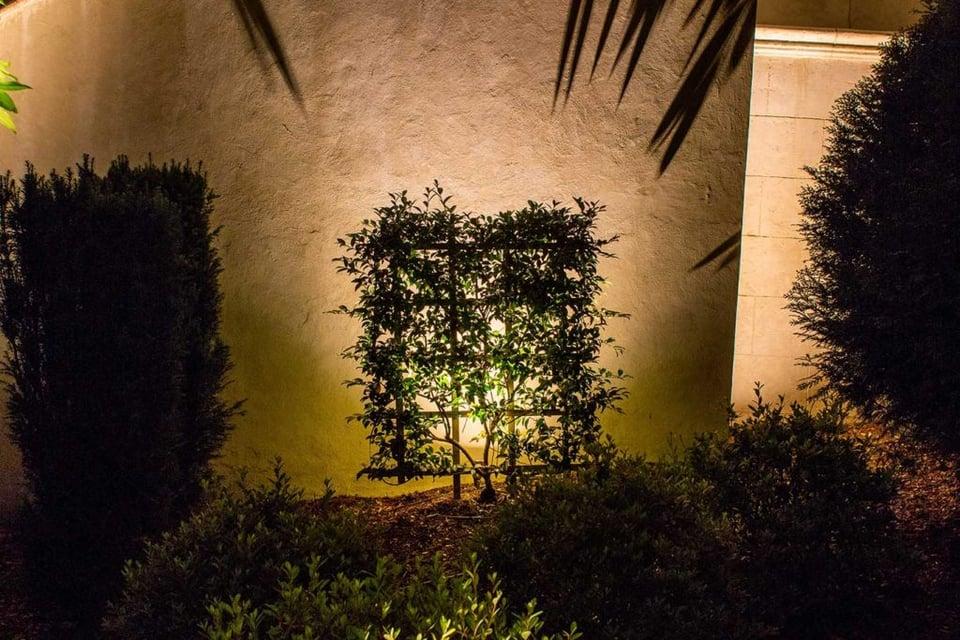 silhouette-lighting-technique-LED