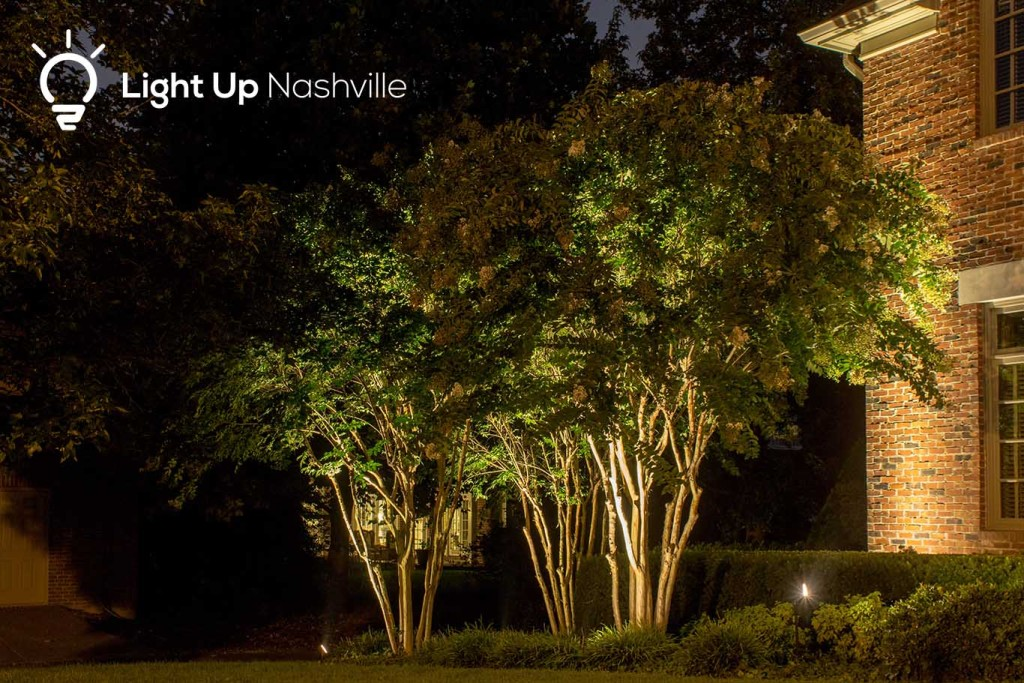 Outdoor LED uplighting to increase curb appeal on crepe myrtle landscape