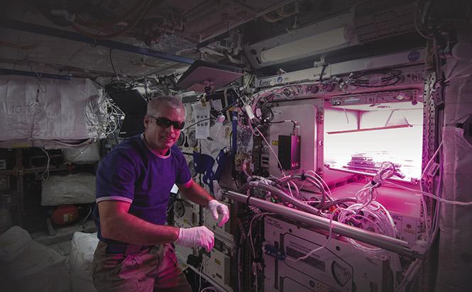 NASA uses LEDs to grow plants