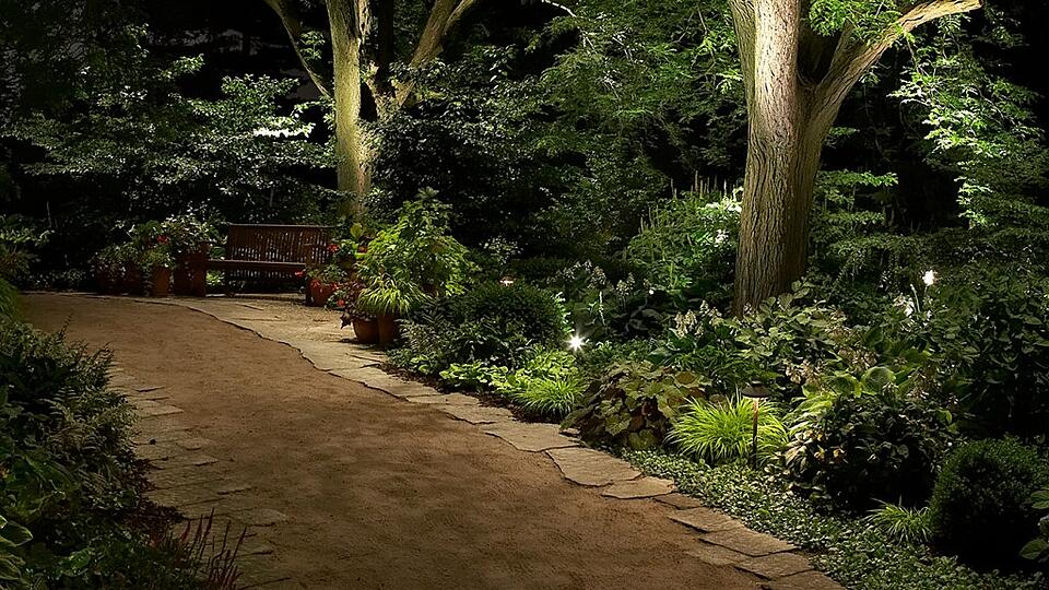 down lighting onto walkway from trees